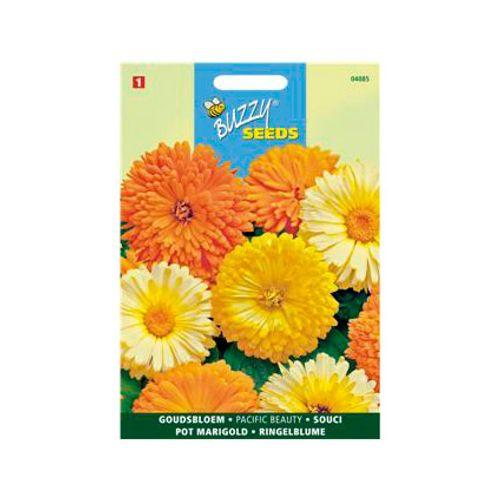 Buzzy seeds zaden goudsbloem pacific beauty
