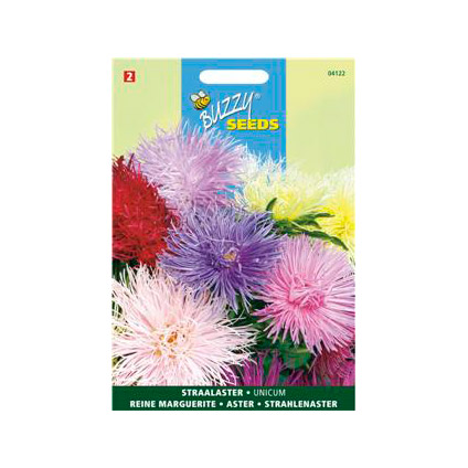 Buzzy seeds zaden straalaster unicum