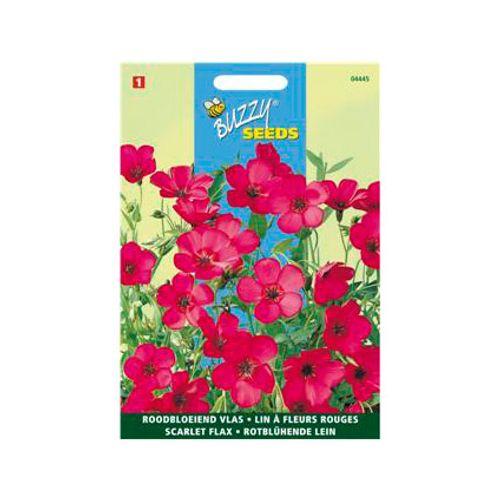 Buzzy seeds zaden vlas grootbloemig rood