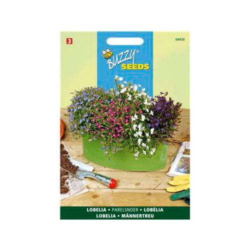 Buzzy seeds zaden lobelia parelsnoer