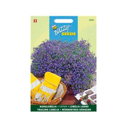 Buzzy seeds zaden hanglobelia saphir