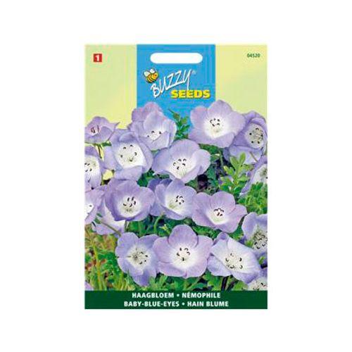 Buzzy seeds zaden nemophila hemelsblauw
