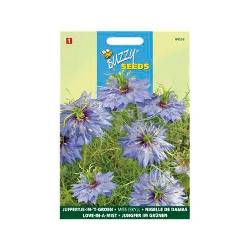 Buzzy seeds zaden juffertje-in-'t-groen miss jekyll