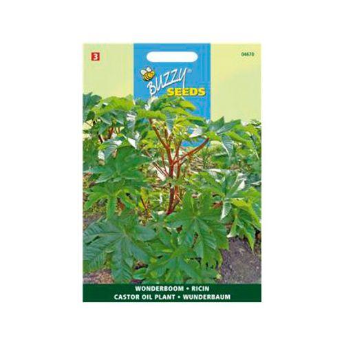 Buzzy seeds zaden wonderboom