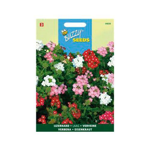 Buzzy seeds zaden ijzerhard compacta