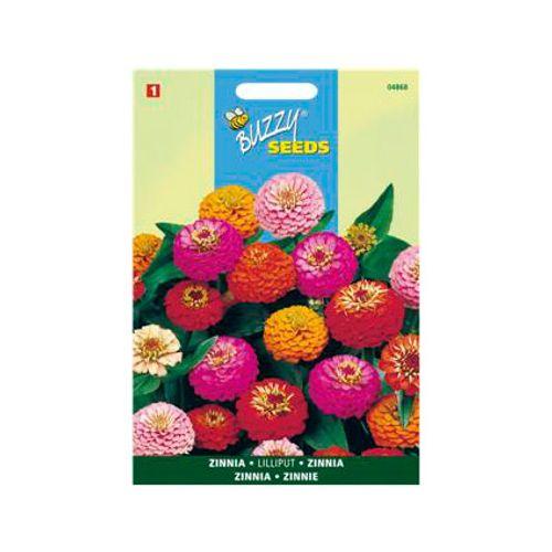 Buzzy seeds zaden zinnia lilliput