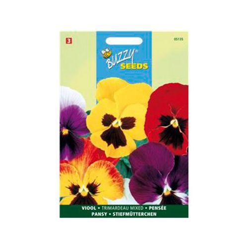 Buzzy seeds zaden viool wittrockiana trimardeau