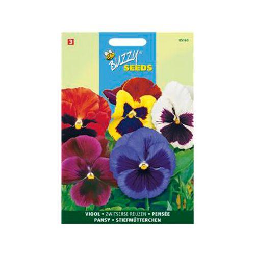Buzzy seeds zaden viool zwitserse reuzen