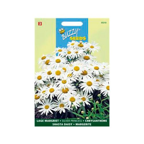 Buzzy seeds zaden lage margriet silver princess