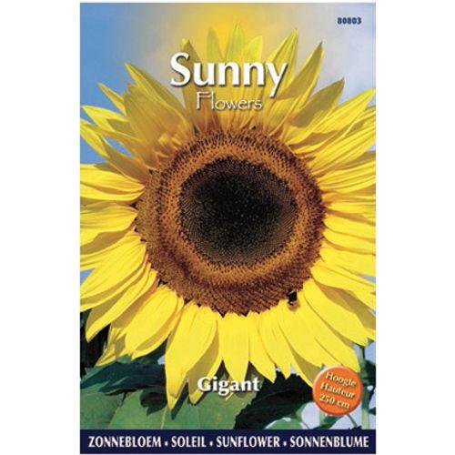 Sunny flowers zaden zonnebloem gigant