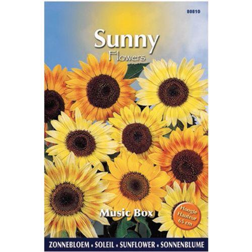 Sunny flowers zaden zonnebloem music box