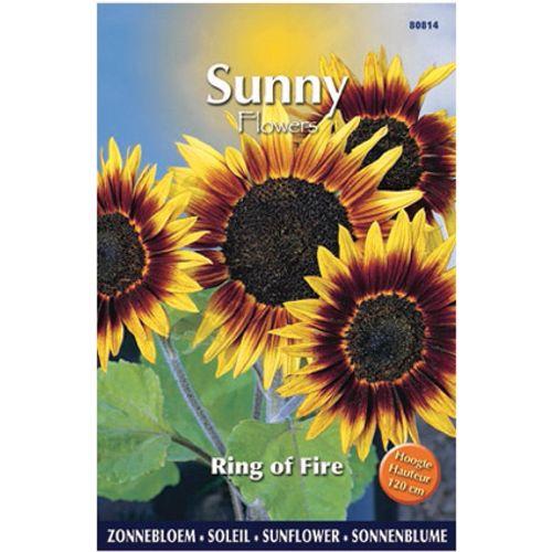 Sunny flowers zaden zonnebloem ring of fire