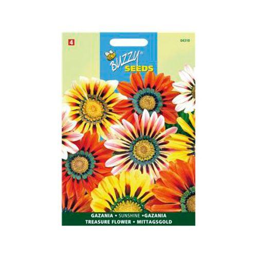 Buzzy seeds zaden gazania sunshine