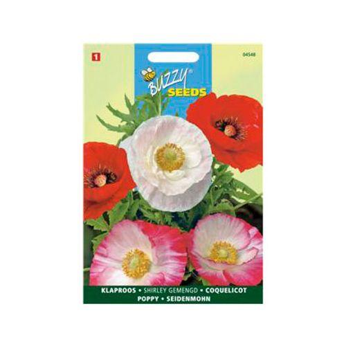 Buzzy seeds zaden klaproos shirley