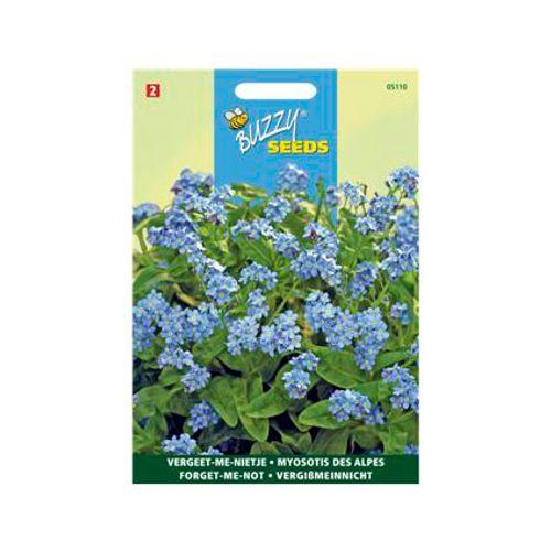 Buzzy seeds zaden vergeet-me-nietje blauw