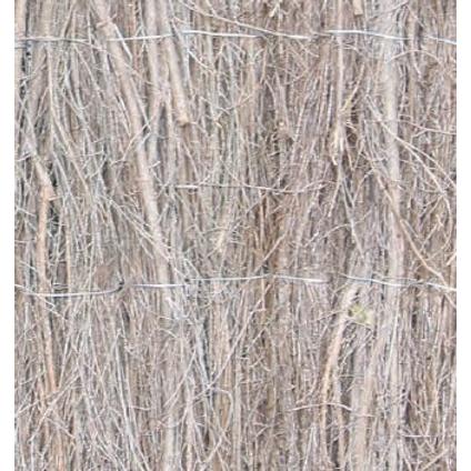 Canisse en bruyère Central Park 1,5 x 5 m