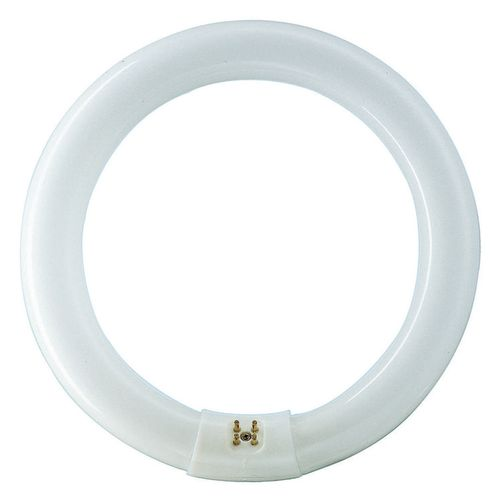 Philips TL buis rond koel wit 40W G10Q