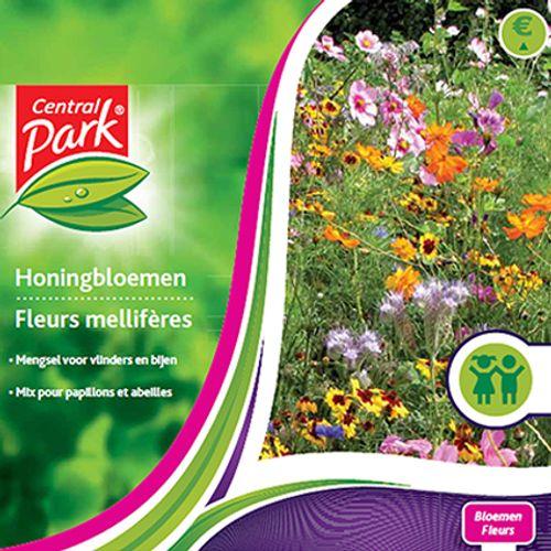Sachet graines fleurs mellifères Central Park 'Fleurs'