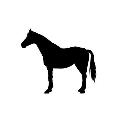 't Stilleven sjabloon paard