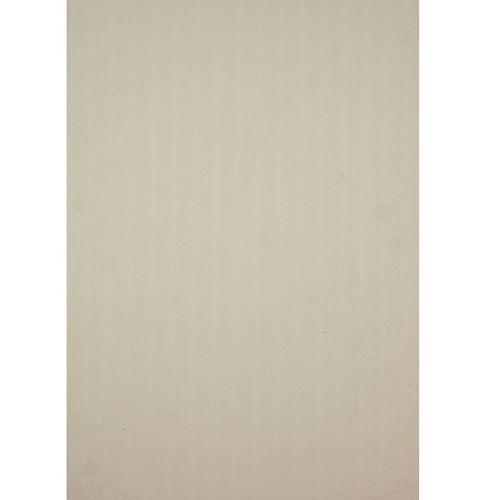 Lambris Dumaplast 'Dumapan' PVC blanc 10mm