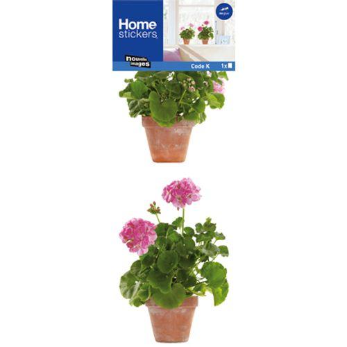 Sticker pour vitre géranium roses Nouvelles Images 24 x 69 cm
