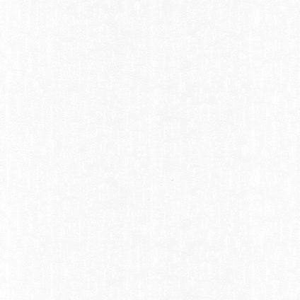 Sencys overschilderbaar papierbehang Emboss wit