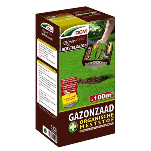 Semence de gazon DCM 'Riparo Plus' 1,3 kg