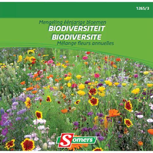 Mélange fleurs annuelles biodiversite Somers