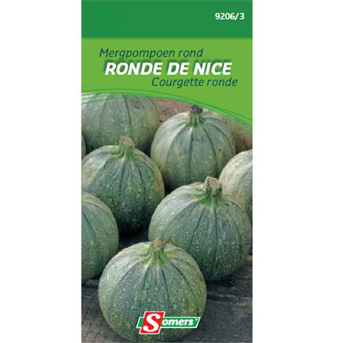 Sachet graines courgette ronde Somers 'Nice'