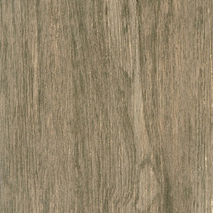 Carrelage sol 'Saloon' quercia 30 x 60 cm
