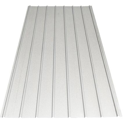 Plaque profilée Scala Plastics laquée zinc