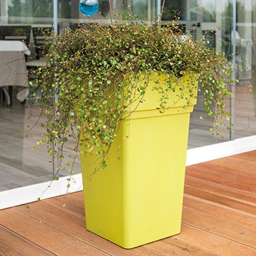 Pot Deroma 'Quadro Alto Samba' olive 65 cm