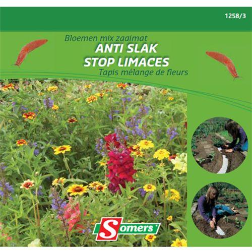 Sachet graines tapis mélange de fleurs Somers 'Stop limaces'