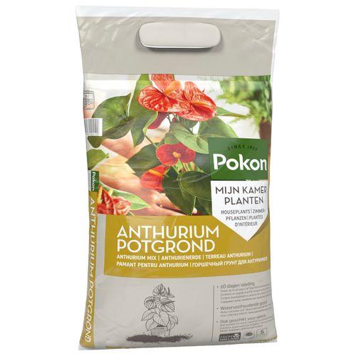 Pokon Anthurium Potgrond 5L