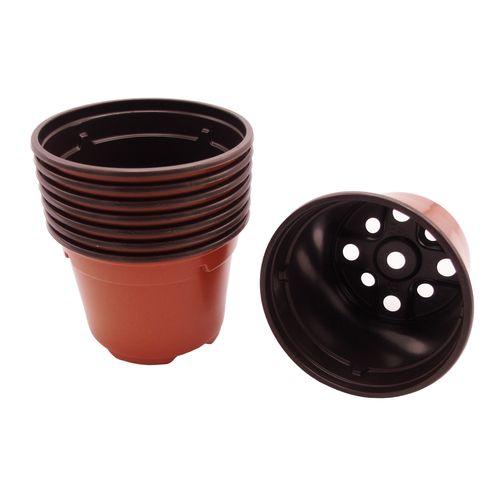 Semis en pot Nature 7 cm – 8 pcs