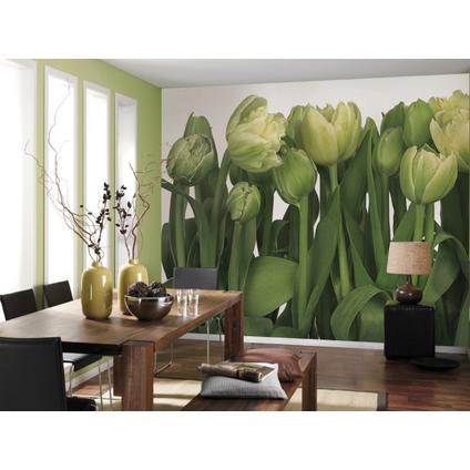 Komar fotobehang Tulips