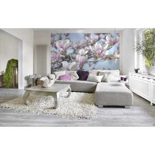 Komar fotobehang Magnolia