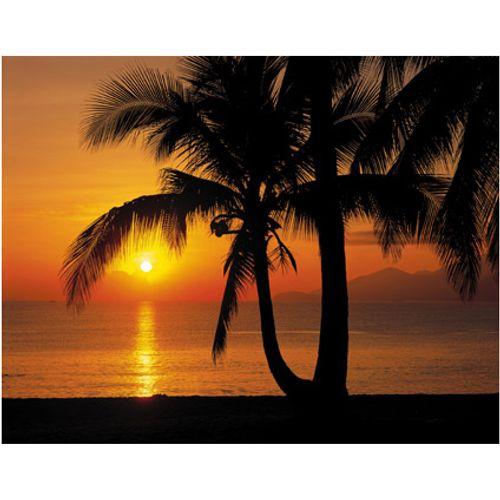 Fotobehang Palmy beach sunrise