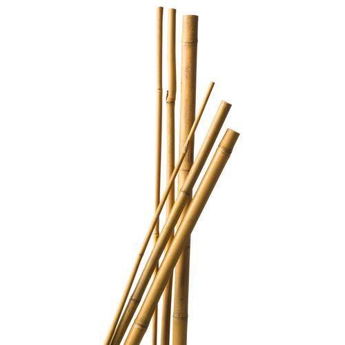 Tuteur bambou Nature naturel 270 cm – 3 pcs