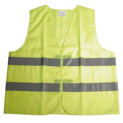 Carpoint veiligheidsvest junior geel