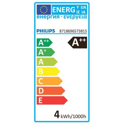 Ampoule LED Philips 'A60' 4W