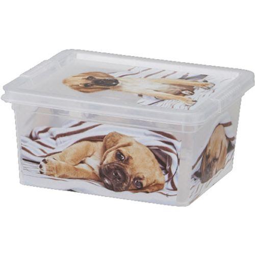 KIS Cbox puppy XXS