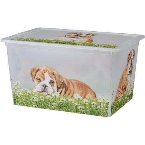 KIS Cbox puppy XL