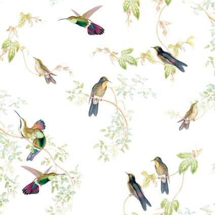 Eigen Huis & Tuin vliesbehang Vogelvrij meerkleurig