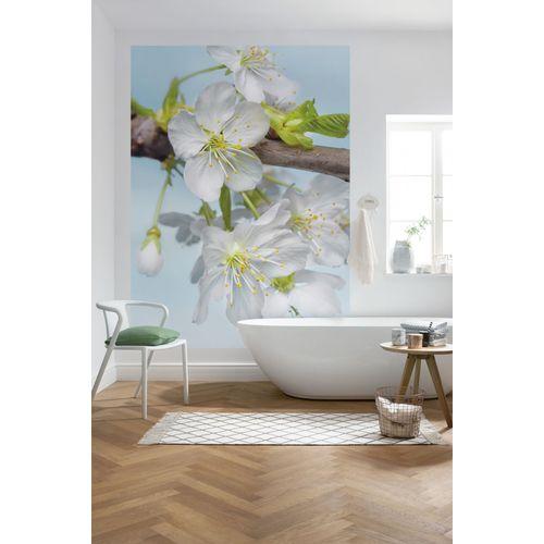 Photo murale Komar Blossom