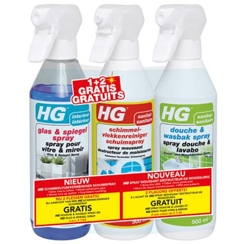 Spray moussant destructeur de moissures HG 500 ml -3 pcs
