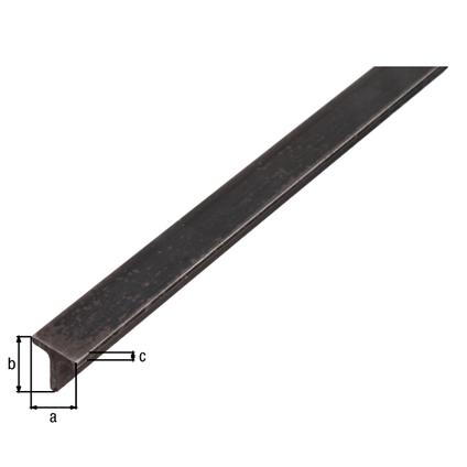 Profilé T GAH Alberts acier noir 2 m x 2 cm