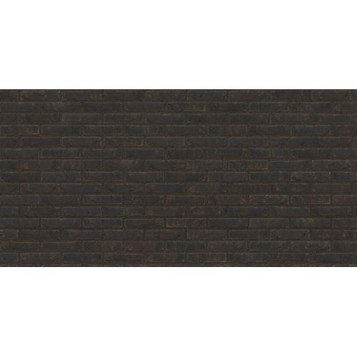 Coeck gevelsteen M50 mangaan zwart 190x90x50mm 14.5m² + palet 3004837