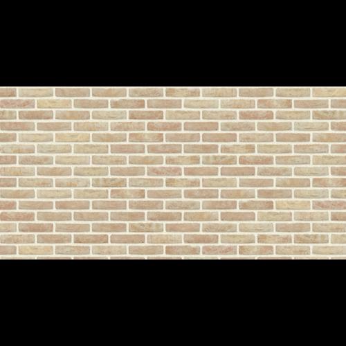 Coeck gevelsteen Anderlecht mod50 190x90x50mm
