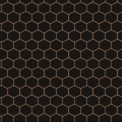 DecoMode vliesbehang Hexagon zwart